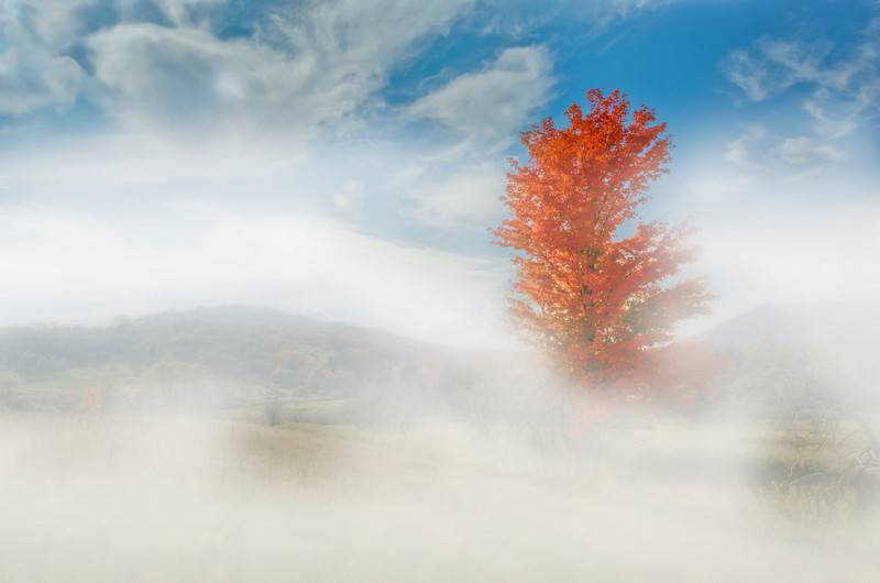 """Fog lifting in Canaan Valley<br /> <br /> to purchase - <a href=""""https://goo.gl/42y4eF"""">https://goo.gl/42y4eF</a>                                                             .............................................pixel paintography"""