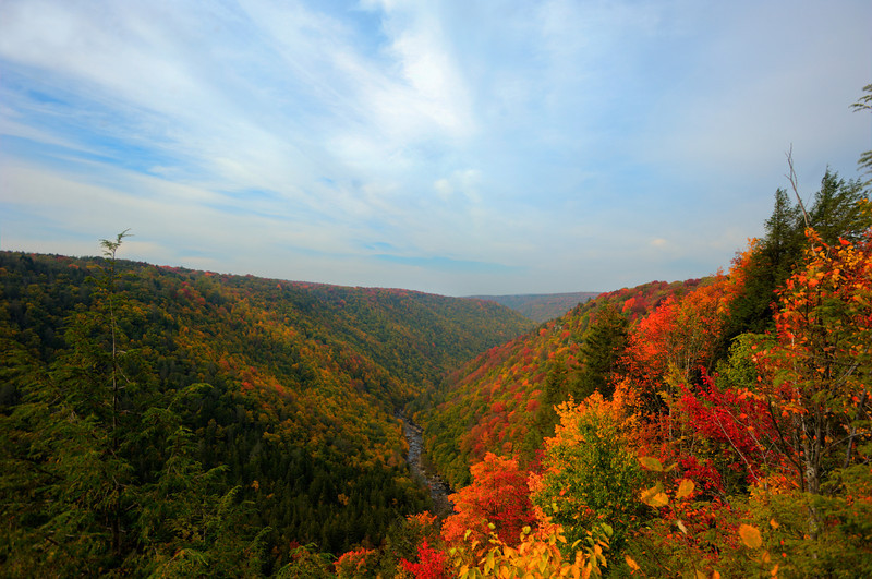 """Blackwater gorge in fall<br /> <br /> to purchase - <a href=""""http://dan-friend.artistwebsites.com/featured/blackwater-gorge-in-fall-dan-friend.html"""">http://dan-friend.artistwebsites.com/featured/blackwater-gorge-in-fall-dan-friend.html</a>                                                             .............................................pixel paintography"""