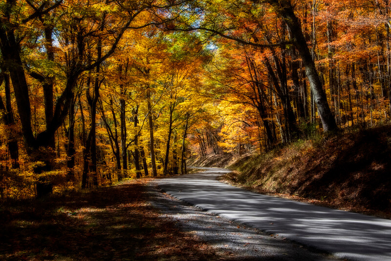 Country Roads in West Virginia