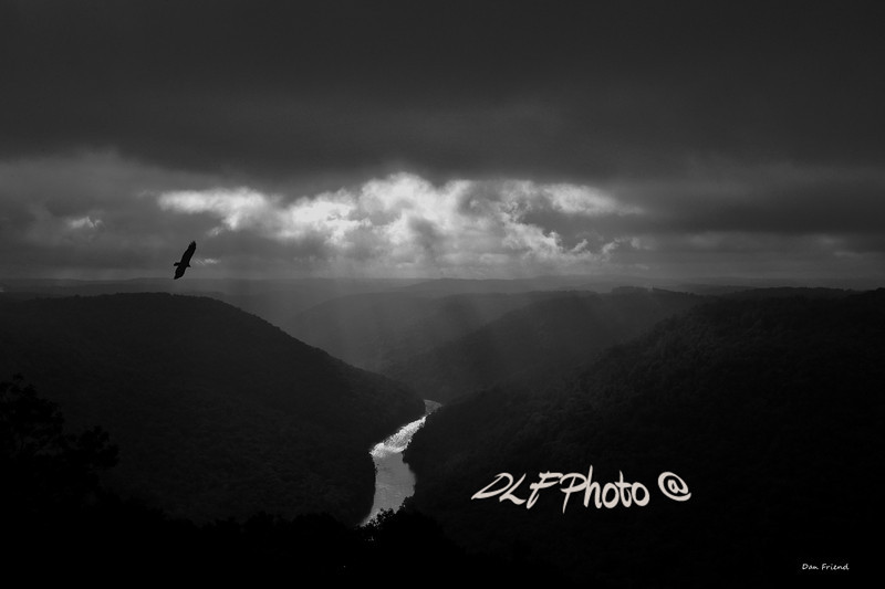 """Buzzard Flying In Gorge<br /> <br /> Framed, metal, canvas order at this website - <a href=""""http://fineartamerica.com/featured/buzzard-flying-in-gorge-dan-friend.html"""">http://fineartamerica.com/featured/buzzard-flying-in-gorge-dan-friend.html</a>                                                             .............................................pixel paintography"""