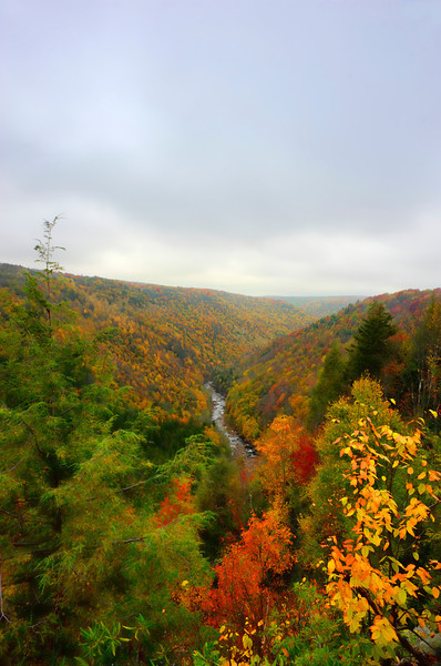 """Looking downstream at Blackwater River Gorge in fall<br /> <br /> to purchase - <a href=""""http://dan-friend.artistwebsites.com/featured/looking-downstream-at-blackwater-river-gorge-in-fall-dan-friend.html?newartwork=true"""">http://dan-friend.artistwebsites.com/featured/looking-downstream-at-blackwater-river-gorge-in-fall-dan-friend.html?newartwork=true</a>                                                             .............................................pixel paintography"""