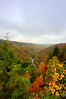 "Looking downstream at Blackwater River Gorge in fall<br /> <br /> to purchase - <a href=""http://dan-friend.artistwebsites.com/featured/looking-downstream-at-blackwater-river-gorge-in-fall-dan-friend.html?newartwork=true"">http://dan-friend.artistwebsites.com/featured/looking-downstream-at-blackwater-river-gorge-in-fall-dan-friend.html?newartwork=true</a>                                                             .............................................pixel paintography"