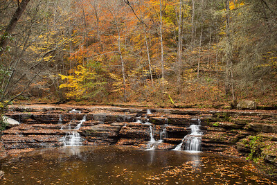 Camp Creek State Park