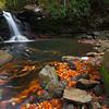 Mill Creek Falls #1