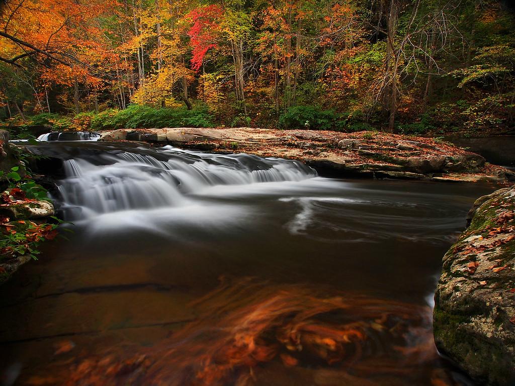 Mill Creek #1