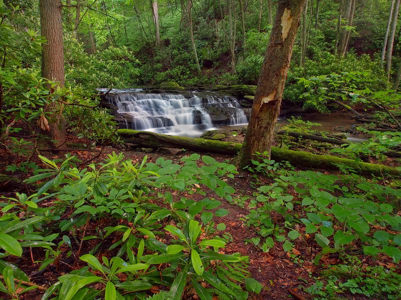 Keeney's Creek - 2
