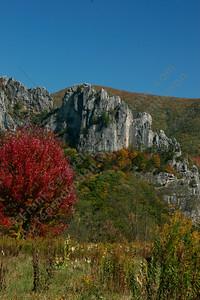 Seneca rocks Autumn