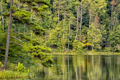 Lake Vesuveus