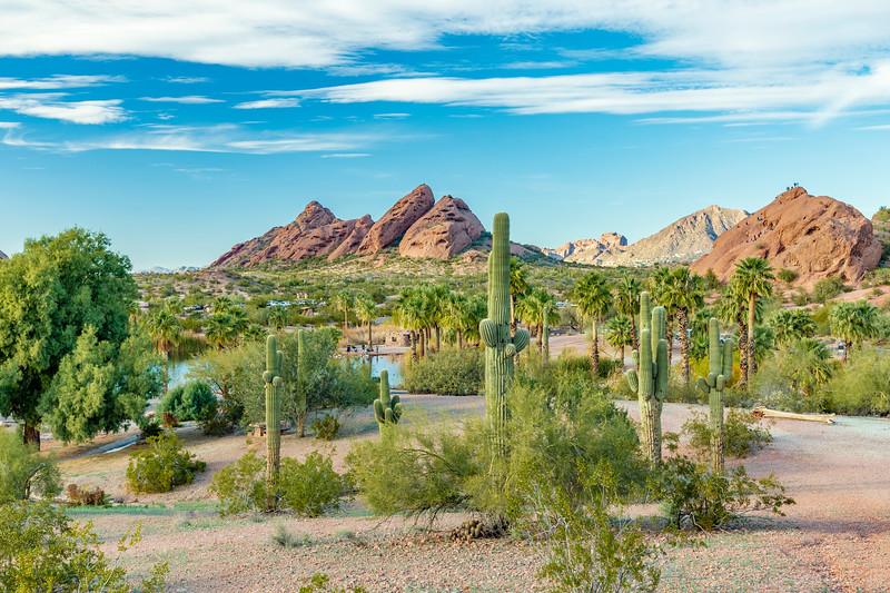 ARIZONA-Phoenix-Pagago Park-Desert Botanical Garden