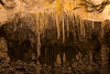 NM-CARLSBAD CAVERNS NATIONAL PARK