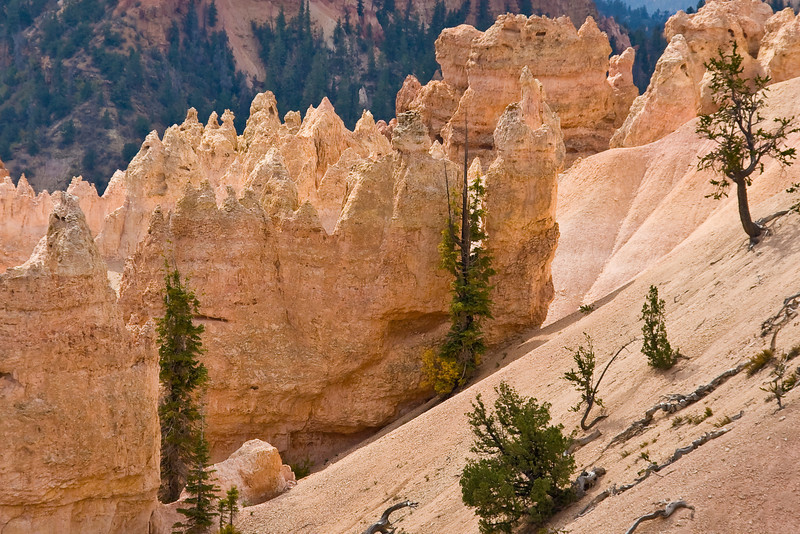 UT-BRYCE CANYON NATIONAL PARK-SWAMP CANYON