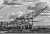 CA-OAKLAND-Port of Oakland