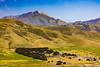 California-Big Sur-Pico Blanco