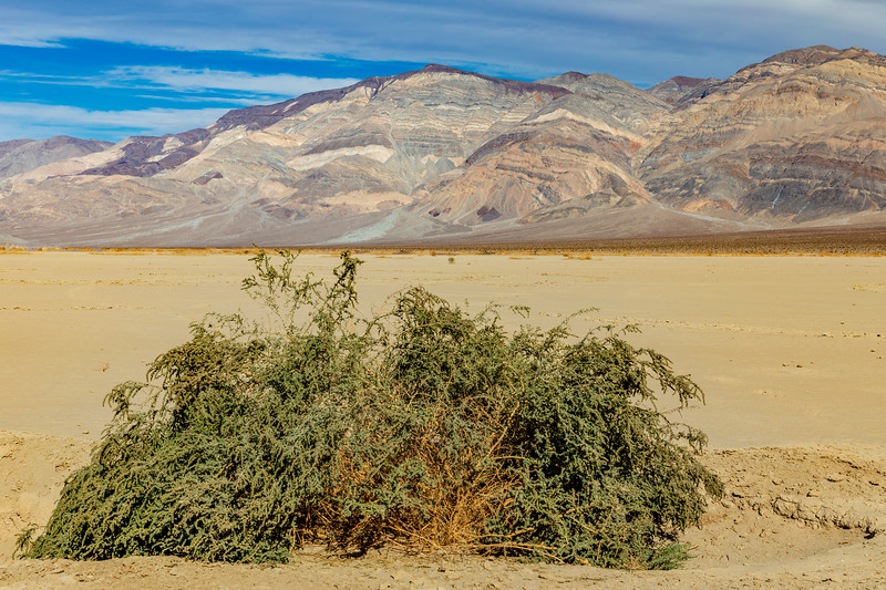 California-Death Valley National Park-Inyo County-Panamint Range