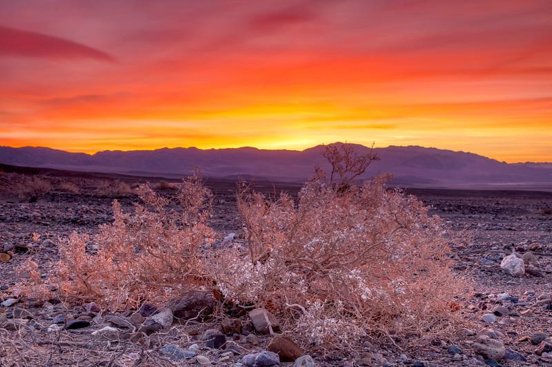 California-Death Valley National Park-Beatty Junction sunrise