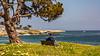 California-Santa Cruz