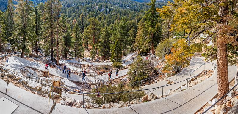 CA-Mount San Jacinto State Park