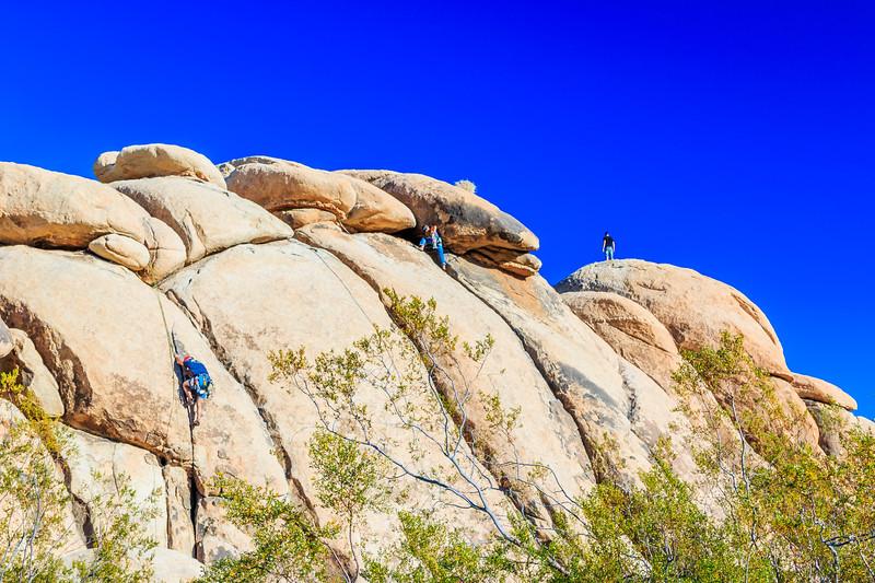 CA-Joshua Tree National Park-Rock climbing