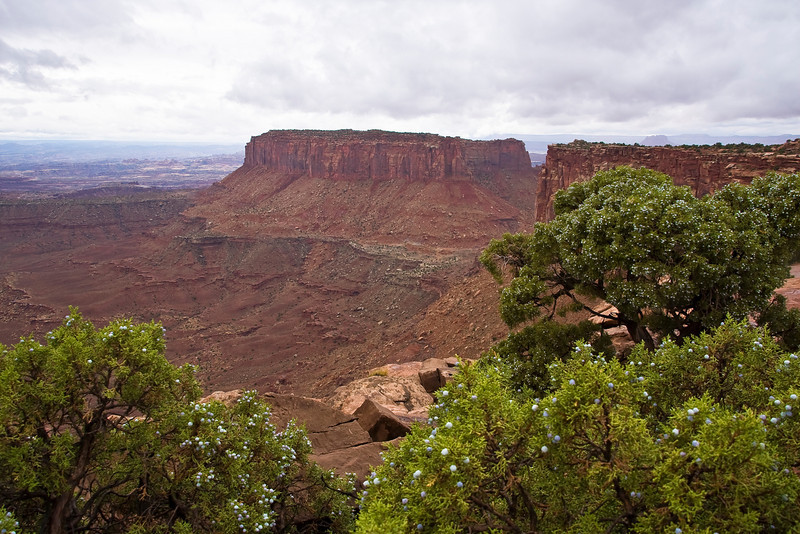 UT-CANYONLANDS NATIONAL PARK-GRAND VIEW POINT OVERLOOK