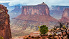 UT-CANYONLANDS NATIONAL PARK-HOLEMAN SPRING CANYONS