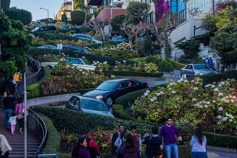 CA-SAN FRANCISCO-LOMBARD STREET