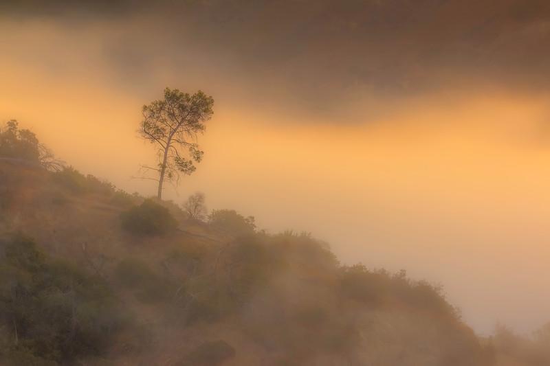 CA-LOS ANGELES-Western Canyon