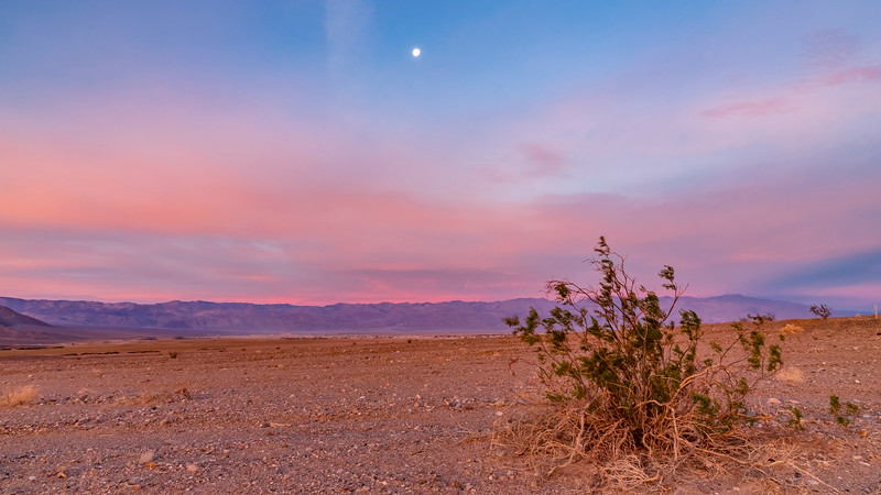 California-Death Valley National Park-Beatty Junction sunrise and moon set