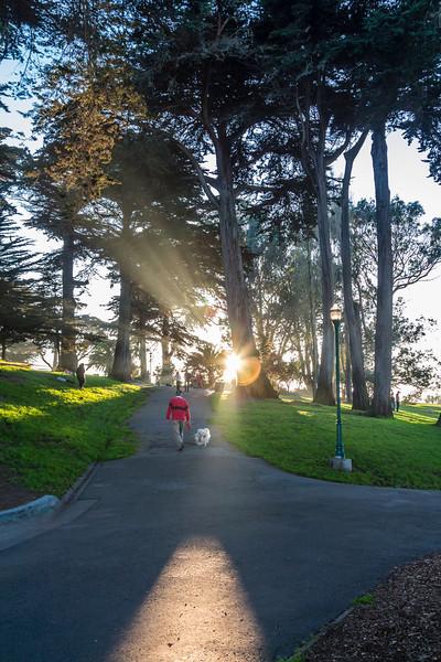 CA-SAN FRANCISCO-ALAMO SQUARE