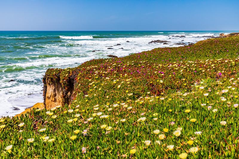 California-Pescadero-Pigeon Point