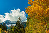 Utah-Sundance