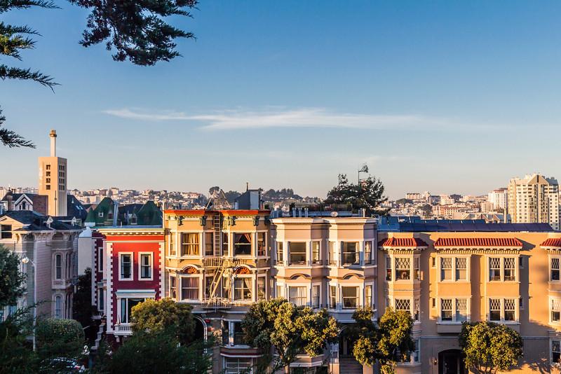 CA-SAN FRANCISCO-PAINTED LADIES