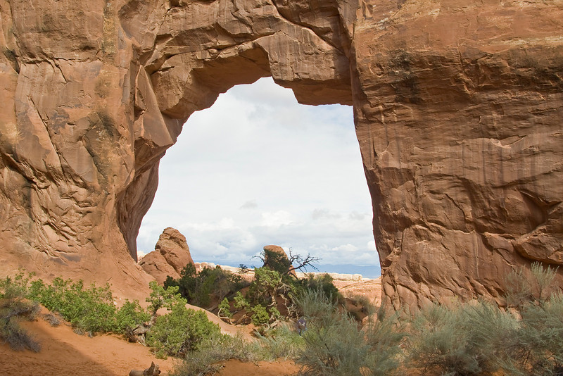 UT-ARCHES NATIONAL PARK-PINE TREE ARCH