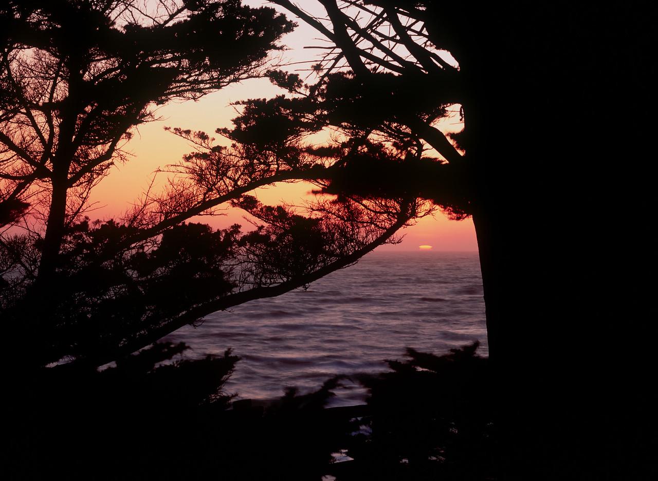 Sunset, Fitzgerald Marine Reserve, California, 1993