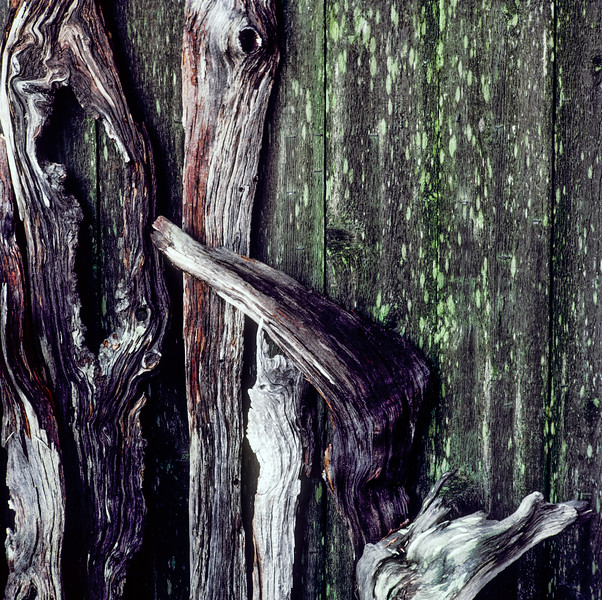 Fence, Seattle, Washington, 1991