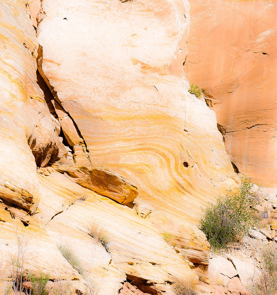 Canyon, Capitol Reef National Park, 2000