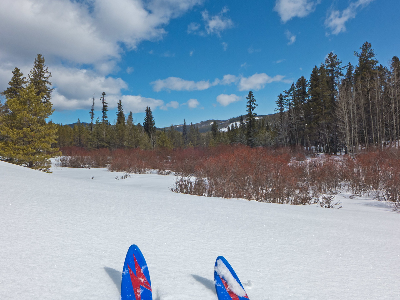Easy supportive off-trail travel, with no sounds except the hiss of snow against the skis.