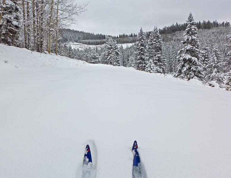 Relatively easy and fast trailbreaking on a blank canvas, after the skier whose track I was following peeled off at the shortcut to Elbow trail.