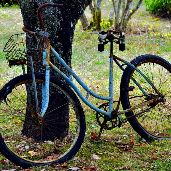 biking1_resize