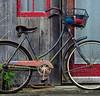 biking5_resize