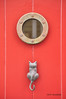 433_CatattheDoor_resize