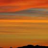 17b_Sunrisebird