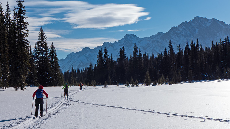 Continuing south on a good skier set track through the long series of meadows at West Elk Pass.