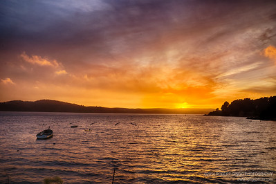 Tomales Bay Sunset June 2