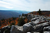 View south into Red Creek Canyon, Dolly Sods Wilderness