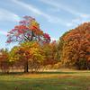 Fall at Orchard Beach