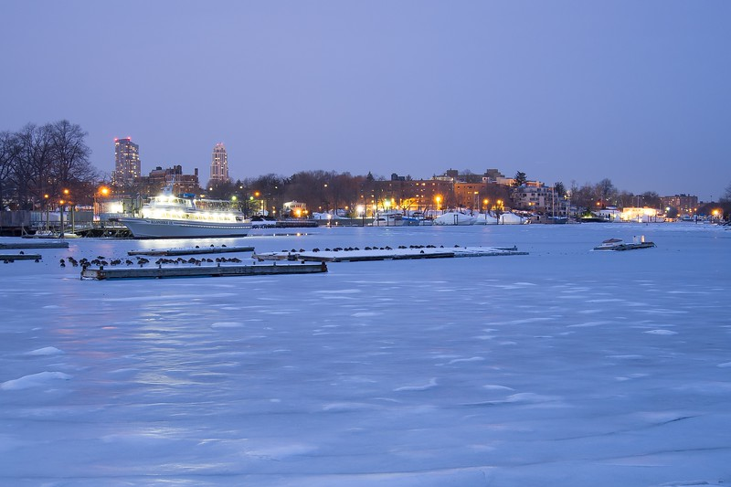 Frozen Harbor