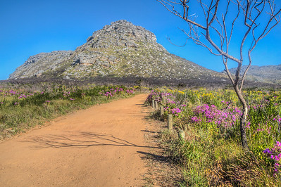 Silvermine Nature Reserve, South Africa