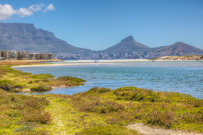 Table Bay Nature Reserve, Milternon Lagoon, Cape Town, South Africa