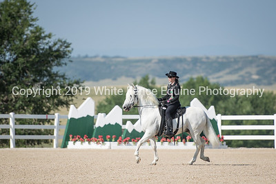 Western Dressage in the Rockies August 2018