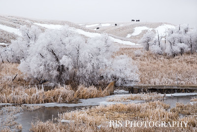 Ranchland in Winter